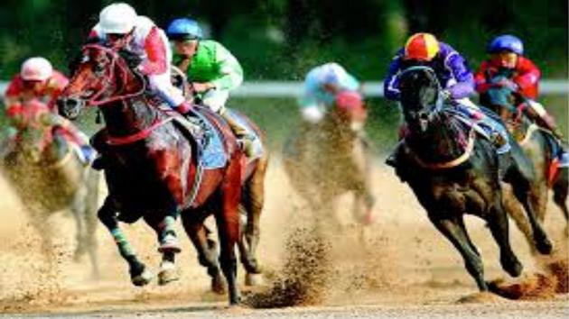 Comment bien jouer au course de chevaux ?
